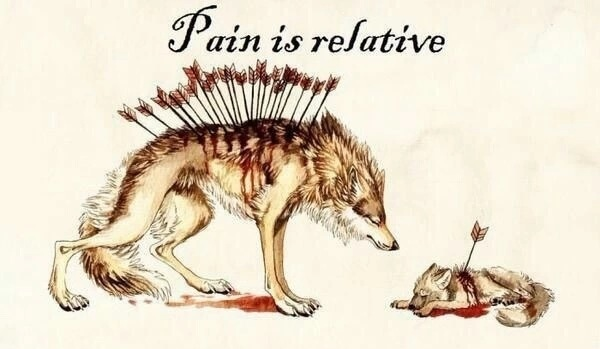 1448388371_Pain is relative.jpg